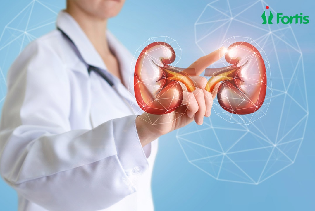 KWhat-you-need-to-know-about-Kidney-Transplantation-min