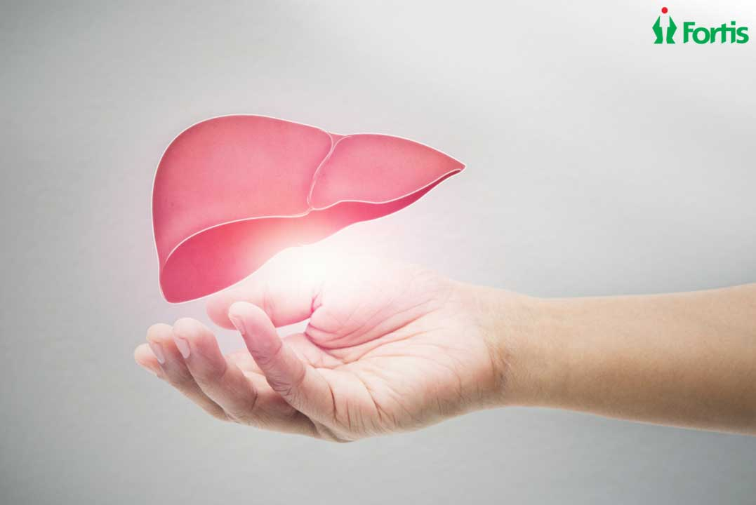 What You Need To Know About Liver Disease And Liver Transplant?