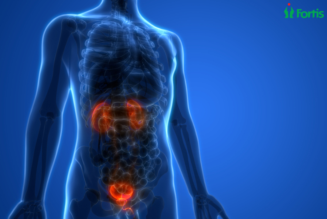 Insights into Bladder Cancer
